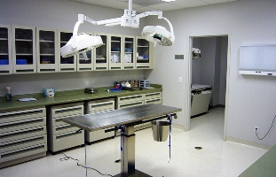 Veterinary Technician Lab