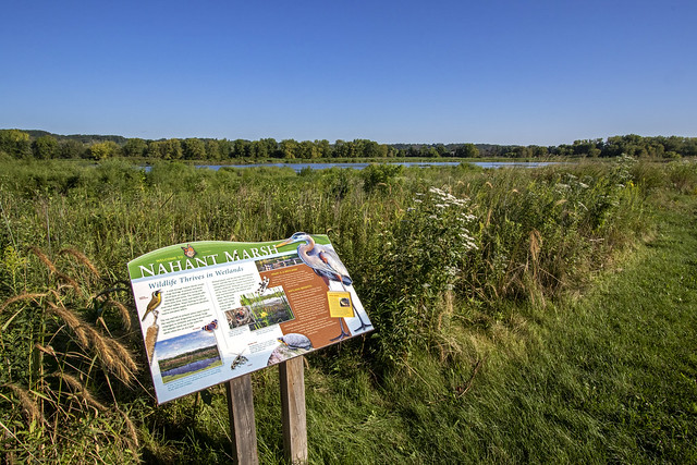 Nahant Marsh landscape and informational sign